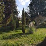 Parc de la Cadole en hiver