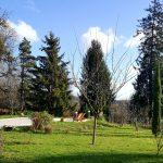 Parc de la Cadole de Chardonnay en hiver